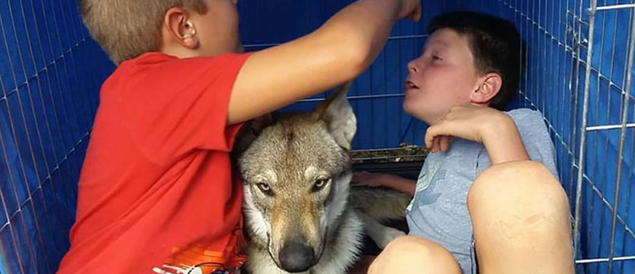 Bambini con cane lupo cecoslovacco